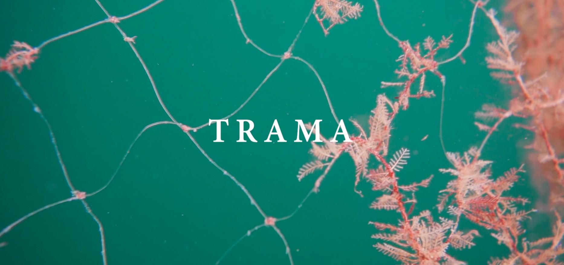 TRAMA - filme de Felipe Julian